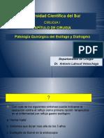 esofago (1)