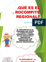 Presentación Procompite (15.10.2015)