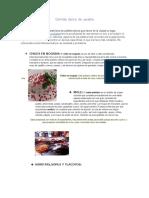 Comida  típica  de  puebla.docx