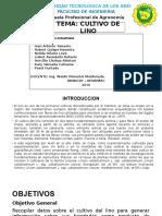 Exposicion c. Linaza- Lino