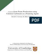 Curran_2004_PhD-27584