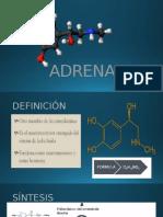ADRENALINA.pptx