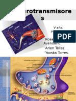 93360571-Neurotransmisores.pptx