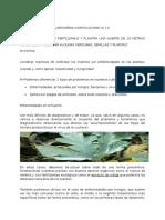 Jardineria y Horticultura Especialidad A13