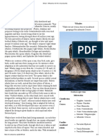 199 Facts About Whales