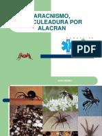 6. ARACNISMO Y ALACRAN.pdf
