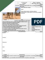 OFI - NEMZETI - Biológia témazáró feladatlapok 7. osztály + megoldás