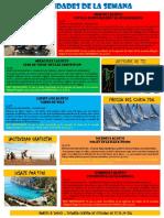 Actividades 1 Agosto-7 Agosto