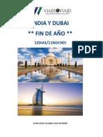 India y Dubai Fin de Año 2016 (2)