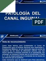 7.-Guia Grafica Pato 20241