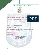 Informe de Genetica  trabajo de ucayali