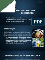 Tópicos Especiais - Biodiesel