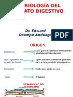 Embrio Gastrointestinal.pptx