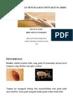 Pengertian Dan Pencegahan Penyakit Scabies