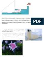 Periodico cultural.docx