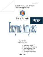 Tieu Luan Enzym Amylase