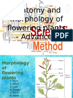 Anatomy and Morphology of Flowering Plants - Advanced