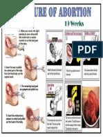 ABORTION-2.pdf