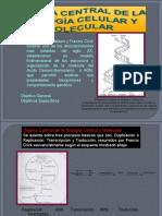 Dogma Central de La Biologia Celular y Molecular
