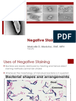 Negative Special and Living Bacteria Motility Maricelle Manlutac