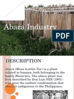 Abacca Industry in the Philippines
