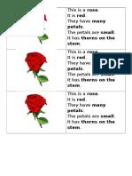 flower for reading.docx