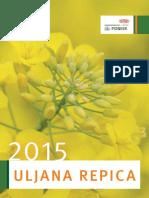 Pioneer Katalog Uljana Repica 2015