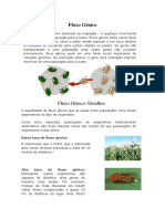 Fluxo Gênico.docx