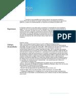 e-QuienesSomos (2).pdf