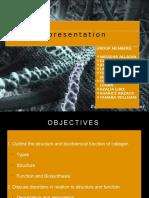 Collagen Presentation 1
