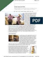 15.12.29 EP Una pizca de sal de los incas en Perú.pdf