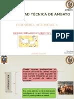 Bioseguridaddecaprinosyovinos 140119104123 Phpapp01 (2)