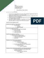 Desarrollo Programa Teorias 1