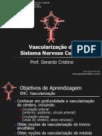 T10_Vascularizacao_SNC