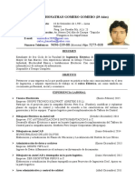 CV Carlos Gomero Gomero IE