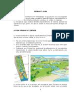 Acción Geológica Del Agua1