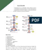 GLUCOLISIS22