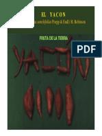 Cultivo de Yacon-16 AG-241
