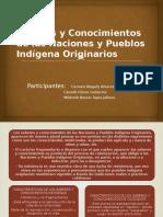 Saberes y Conocimientos de Las Naciones y Pueblos II