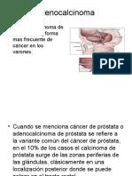 Anatomia Patologica2
