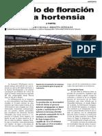 Forzado de Floración en Hortensia (1ra. Parte)