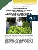 Nota de Prensa 2016 - 190