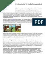 Corsi SEO Aziendali In Lombardia Ed Emilia Romagna, Go@ SEO