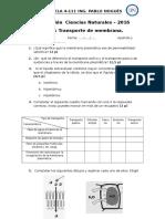 Evaluación Transp de Mmb