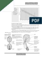 edexcelbiologyfora2-130202131946-phpapp02