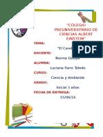 INFORME CEREBRO.docx