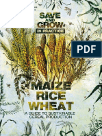 Save and Grow Maize Rice Wheat