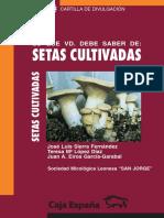 setas-cutilvadas.pdf
