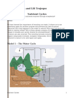 Nutrient Cycles Pogil Rennel Carbon Dioxide Water 3rd Grade Water Cycle Worksheets Nutrient Cycles Pogil Natalia