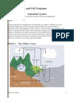 nutrient cycles pogil-natalia